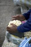 厄瓜多尔市场 库存图片