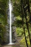 厄瓜多尔瀑布 库存照片