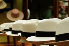 厄瓜多尔,巴拿马草帽 免版税库存图片