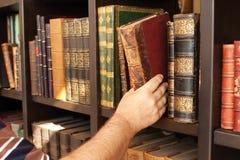 历史图书馆 库存照片