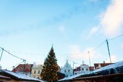 历史大厦圣诞树和门面在市政厅广场的在塔林 免版税库存图片