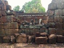 历史废墟 石结构 柬埔寨收割siem 库存照片