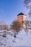 历史的乌普萨拉城堡 图库摄影