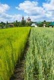 历史的市俄罗斯-苏兹达尔 免版税库存照片
