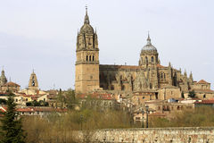 历史的市的看法有新的大教堂的萨拉曼卡 免版税库存照片