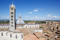 历史的市锡耶纳,托斯卡纳,意大利 库存照片