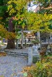 历史的村庄在autumn Shirakawa-Hachiman寺庙白川町去 库存照片