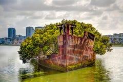 历史的海难SS Ayrfield在悉尼 免版税库存照片