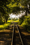 历史的狭窄的铁轨。波兰, Znin。 免版税图库摄影