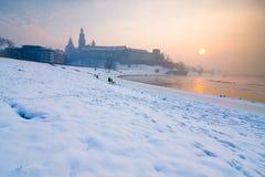 历史的皇家Wawel城堡在克拉科夫,波兰 免版税图库摄影