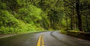 历史的老高速公路视图在哥伦比亚河峡谷 免版税库存照片