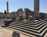 历史的Apollon寺庙 图库摄影