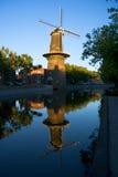 历史荷兰风车和反射在水中,斯希丹,鹿特丹,荷兰 免版税库存照片
