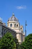 历史记录博物馆自然维也纳 免版税图库摄影