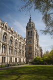 历史记录自然伦敦的博物馆 免版税库存照片