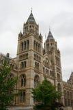 历史记录自然伦敦的博物馆 库存照片