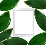 压片有在白色隔绝的空的屏幕和绿色叶子的个人计算机 免版税图库摄影