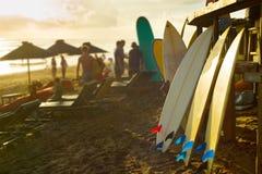 巴厘岛冲浪板冲浪者租务  免版税库存照片