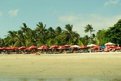 巴厘岛海滩kuta 图库摄影