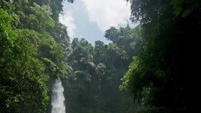 巴厘岛瀑布印度尼西亚自然热带慢动作 股票录像