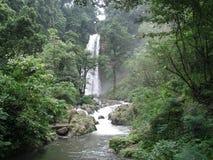 巴厘岛瀑布  库存照片