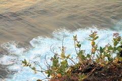 巴厘岛的角落 库存图片