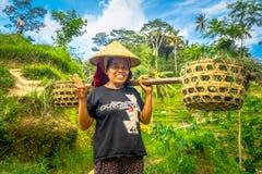 巴厘岛,印度尼西亚- 2017年4月05日:妇女在戴米帽子和拿着用她的手棍子的米领域走 库存图片