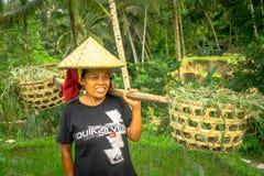 巴厘岛,印度尼西亚- 2017年4月05日:妇女在戴米帽子和拿着用她的手棍子的米领域走 库存照片