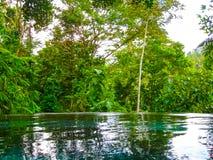 巴厘岛,印度尼西亚- 2014年4月13日:游泳池看法在Nandini密林手段和温泉的 免版税图库摄影