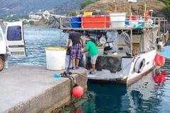 巴厘岛,海岛克利特,希腊, - 2016年6月30日:地方渔夫卸载从渔船的鱼捕获 免版税图库摄影
