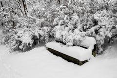 厚实地积雪的长凳,树,灌木在公园 免版税库存图片