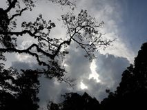 厚实的云彩在晚上 库存图片