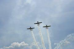 原始杂技的飞行 库存照片