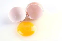 原始残破的鸡蛋 免版税库存照片
