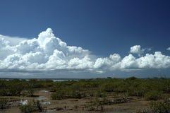 原始海岸线 库存图片