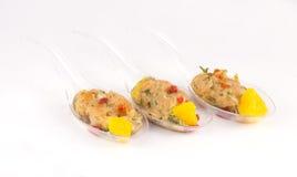 原始的三文鱼开胃菜 图库摄影