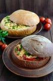 原始的开胃菜-被充塞的黑麦和麦子面包,被烘烤 在土气样式的盘 库存照片