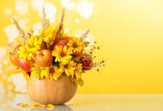 原始的植物结构的花、蔬菜和水果在黄色背景 库存照片