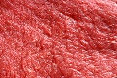原始的牛肉 免版税图库摄影