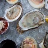 原始的牡蛎 免版税库存照片