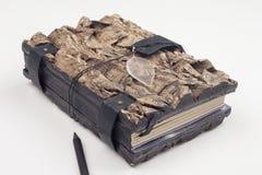 原始的笔记本的组织者 免版税库存图片