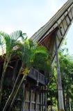 原始的苏拉威西岛人民的传统种族房子,印度尼西亚 免版税库存照片