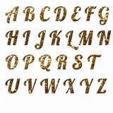 原始的英国信件上色衣服饰物之小金属片 库存图片
