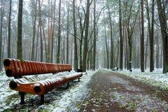 原始的长木凳在城市公园在冬天初 免版税库存照片