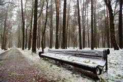 原始的长木凳在城市公园在冬天初 库存照片