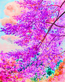 绘原始的风景的水彩五颜六色喜马拉雅樱桃开花 免版税图库摄影