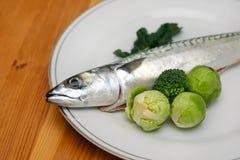 原始的鱼 免版税库存图片