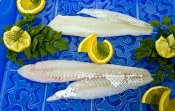 原始的鳕鱼片 库存图片