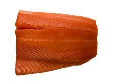 原始的鳟鱼 库存图片