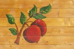 原始苹果的分行 图库摄影